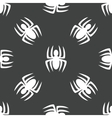 Spider pattern vector image vector image