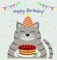 A gray fat cat in the cap sits and holds a cake in