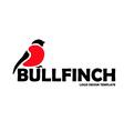 Bullfinch logo design template vector image vector image