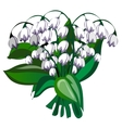delicate bouquet white bells flowers vector image vector image