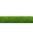 green grass border white background vector image vector image