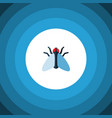 isolated tiny flat icon housefly element vector image