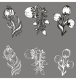 set of design of flowers vector image vector image