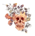 Skull and twigs cotton flower yellow oak leaves vector image