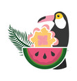 toucan watermelon and flower tropical summer vector image