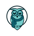 winter owl vector image vector image