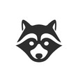 black raccoon icon isolated on white background vector image vector image