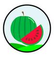 flat color watermelon icon vector image vector image