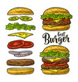 burger with flying ingredients on white background vector image vector image