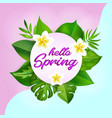 hello spring greeting card with realistic tropical vector image vector image