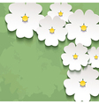 Vintage floral background with 3d flower sakura vector image vector image