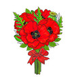 big bunch of red poppy flowers tied with ribbon vector image vector image