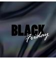 Black Friday sale banner design template vector image vector image