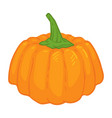 pumpkin ripe vegetable symbol autumn vector image