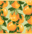 seamless pattern with grapefruit branch in vector image