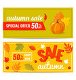 set of autumn sale discount banner with pumpkin vector image vector image