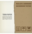 Torn cardboard pieces vector image