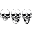 White graphic human skull with black eyes set vector image vector image