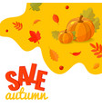 autumn sale discount banner with pumpkins and vector image vector image