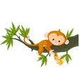 cute baby monkey on a tree holding banana vector image vector image