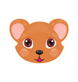 cute bear face or mask vector image