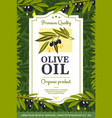 extra virgin olive oil organic natural product vector image vector image