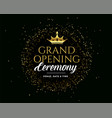 grand open golden premium dark invitation banner vector image vector image