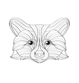 Hand drawn doodle outline raccoon vector image vector image