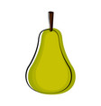 isolated pear sketch icon vector image vector image