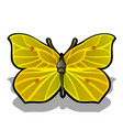 the butterfly is made from the pulp of ripe lemon vector image vector image