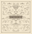 vintage set swirls and scrolls design elements vector image
