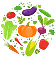 vegetable round template vector image