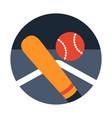 baseball flat vector image