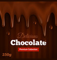 Dark chocolate background print vector image vector image