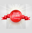 grand opening ceremony celebration banner with 3d vector image vector image