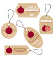 labels with various fruitsfor garnet vector image vector image