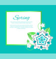 spring flower and poster with text sample isolated vector image vector image
