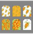 sweet berries labels vector image