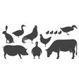 Farm Animal Silhouette vector image