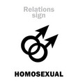 astrology homosexual gay vector image vector image