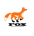Fox logo design template vector image