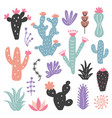 hand drawn wild cactus flowers tropical plant set vector image vector image