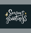 season greetings white calligraphy phrase vector image vector image