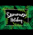 Summer holiday beach palm with dark background vector image