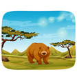 a bear in nature scene vector image vector image