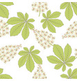 chestnut flower leaf seamless pattern vector image