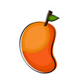 isolated mango sketch icon vector image