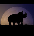 silhouette of a rhino on the background of the vector image vector image