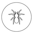 spider or tarantula black icon outline in circle vector image