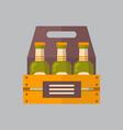 beer bottles box icon oktoberfest festival concept vector image vector image